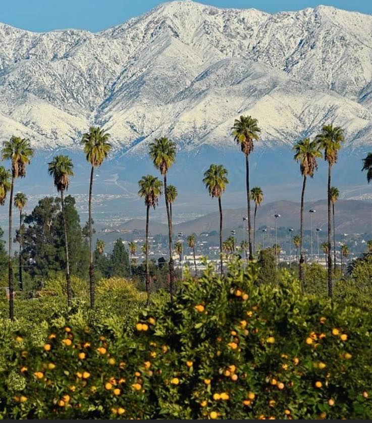Los Angeles LA_38